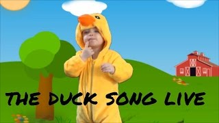 getlinkyoutube.com-the duck song live verson
