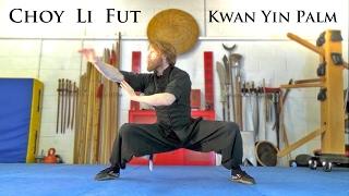 getlinkyoutube.com-Learn Kung Fu | Choy Li Fut Goddess of Mercy form