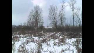 getlinkyoutube.com-Coyote Hunting With The Dogs #2, Feet Up Hunting, LLC
