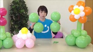 getlinkyoutube.com-バルーンアートでお花をつくろう Balloon  Flower