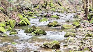 BACKGROUND VIDEO FREE HD River   2577