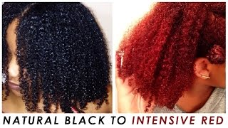 I Colored/Dyed My Natural Hair- Part Two