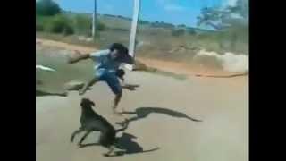 getlinkyoutube.com-Batalla epica   Los Perros del Mal VS Vagabundo del Averno