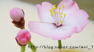 getlinkyoutube.com-클레이아트 벚꽃 만들기 Flower Clay * Cherry Blossom