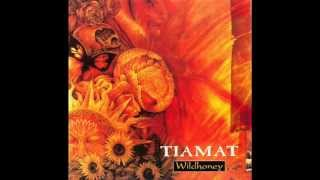 getlinkyoutube.com-Tiamat - Wildhoney (1994) [Full Album]