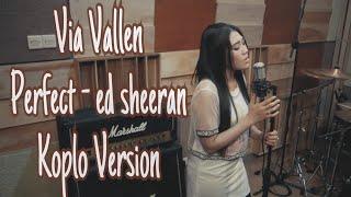 Via Vallen   Perfect  ( Cover ) Koplo Version