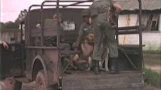 Military Police In The Vietnam War