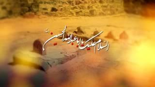 getlinkyoutube.com-Bhai Bhai Pukarti Rahi Main | Mir Hasan Mir | New Noha 2016-17/1438 [HD]