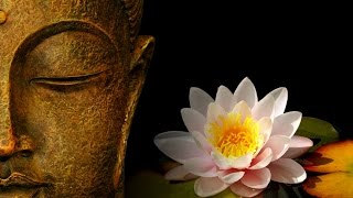getlinkyoutube.com-Дзен - буддизм: философия нерушимых истин