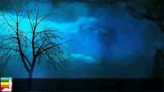 getlinkyoutube.com-কিয়ামতের দিন তিন ব্যক্তির সাথে আল্লাহ তাআলা কথা বলবেন না