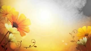 getlinkyoutube.com-خلفية فيديو للمونتاج شروق الشمس مع الورود HD