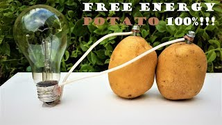 Free Energy Light Bulbs - 220v using Potato width=