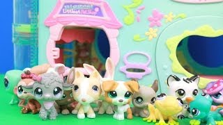 getlinkyoutube.com-BIGGEST Littlest Pet Shop House Hasbro review LPS toy collection AllToyCollector