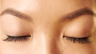 getlinkyoutube.com-HOW TO: Grow Your Eyebrows Back Fast!