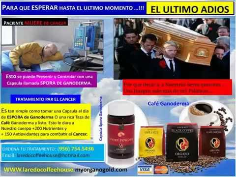 Ganoderma y el CANCER