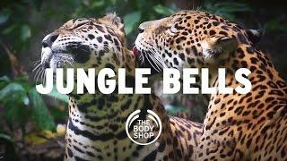 getlinkyoutube.com-Happy Holidays from The Body Shop - #JungleBells