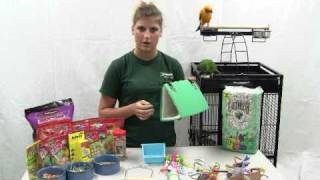 getlinkyoutube.com-How to Set Up a Parrot Cage - Choosing the right toys for your Parrot