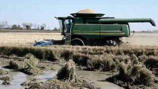 getlinkyoutube.com-John Deere Combine in Rice