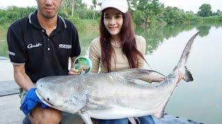 getlinkyoutube.com-Chao Phraya giant catfish ฉลามน้ำจืด แห่งเจ้าพระยา by fishingEZ