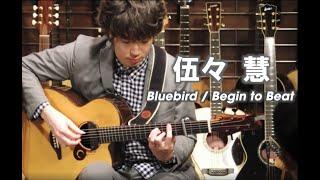 getlinkyoutube.com-伍々 慧 Satoshi gogo Instore live - Bluebird / Begin to beat - Dolphin Guitars
