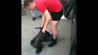 getlinkyoutube.com-Mad dogs spray on jeans