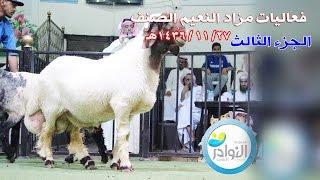 getlinkyoutube.com-النعيم الصنف - المزادالثالث 27 /11 /1436هـ