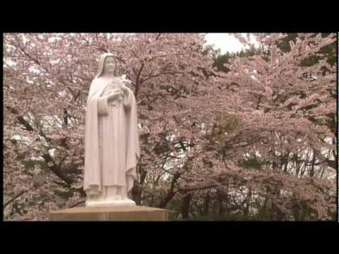 森麻季 (歌手)の画像 p1_21