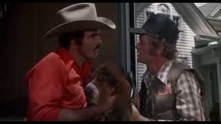 Smokey and the Bandit Trans Am Introduction