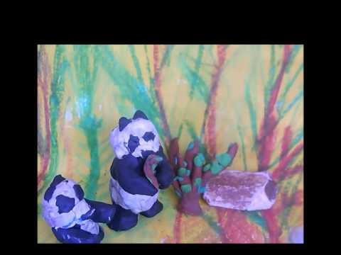 <p>Animation: Endangered animals</p>