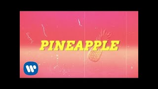 Ty Dolla $ign - Pineapple feat. Gucci Mane & Quavo [Lyric Video]