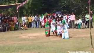 getlinkyoutube.com-santhali ( santali ) dance performance @ song - a sangat kuri ( kudi ) na
