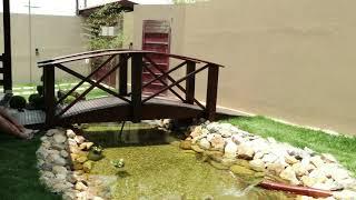 getlinkyoutube.com-Lago Ornamental - Caio Vinicius dos Santos