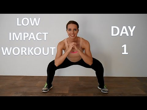 Low Impact Workout Series 1 – Day 1 – Beginner Cardio Workout with Low Impact On Tendons And Joints
