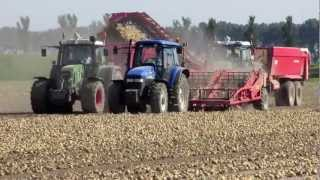 getlinkyoutube.com-Uienladen /Loading onions - van Peperstraten Fendt 936 Vario, New holland T7030 and more!