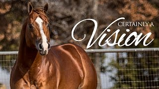 getlinkyoutube.com-Certainly A Vision: 2010 AQHA/APHA Sorrel Stallion