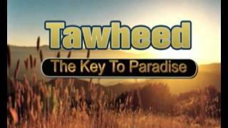 getlinkyoutube.com-Have you found the key to Paradise yet?