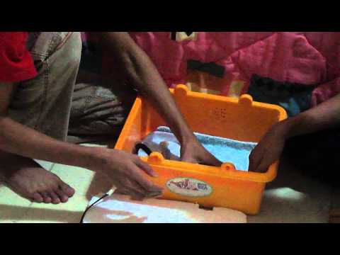 Make a homemade Incubator for Chicken Eggs (latest style)