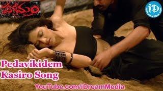 Homam Movie Songs - Pedavikidem Kasiro Song - Jagapathi Babu - Mamta Mohandas - Chakravarthy