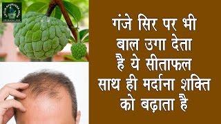 getlinkyoutube.com-गंजे सिर पर भी बाल उगा देता है ये फल साथ ही मैनपावर को बढ़ाने में भी है रामबाण