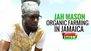 Jah Mason Interview