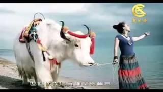 getlinkyoutube.com-藏族歌手琼雪卓玛-把爱留在西藏 Chongshol Dolma song- love to stay in Tibet.