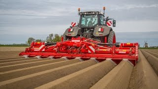 Grimme GF 800 8-row Rotary Hiller