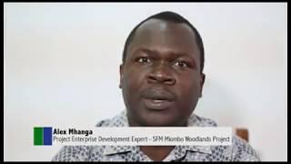 Mradi wa usimamizi wa misitu endelevu ya Miombo mkoani Tabora na Katavi