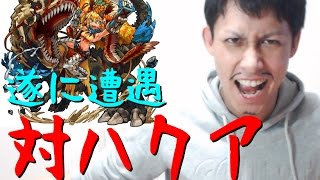 getlinkyoutube.com-【モンスト】遂にあのハクアと遭遇!初決戦!【ぎこちゃん】