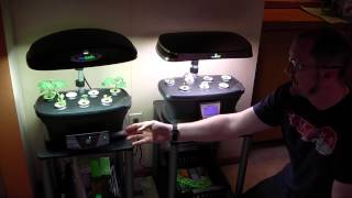 getlinkyoutube.com-Aerogarden Extra, Ultra LED, and model 3 are reviewed by TheHydroCultivator