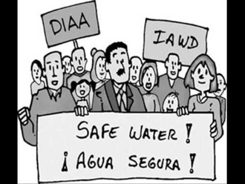 importancia del agua. Importancia Del Agua En El