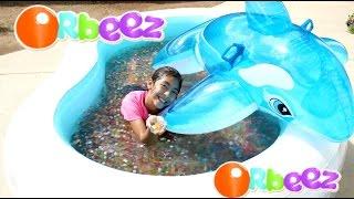 getlinkyoutube.com-Orbeez Pool and Dolphin Summer Water Fun Play!! B2cutecupcakes