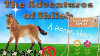 getlinkyoutube.com-The Adventures of Shiloh - a Schleich Horse Movie Series
