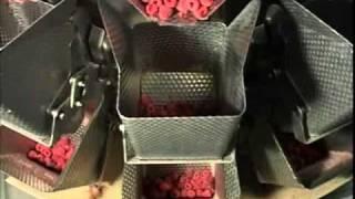 getlinkyoutube.com-Libertas - Automated packing system for raspberries