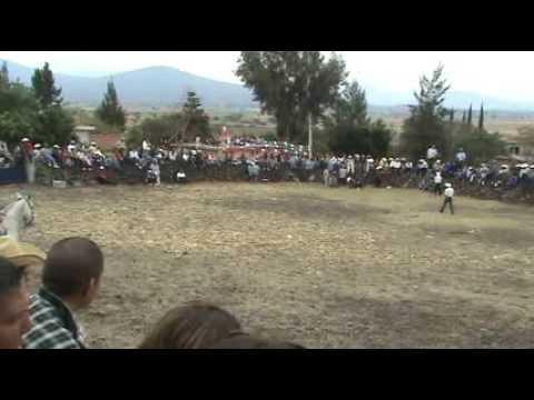 El Saus 2007 -  Jaripeo parte 1- Zamora Michoacan Mexico